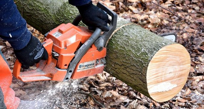 5 Best Services of Chainsaw Rental in 2020 - Post Thumbnail